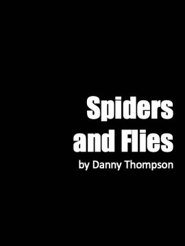 Spiders and Flies