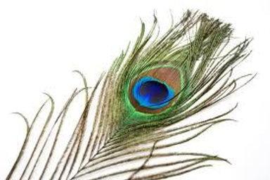 Balancing Feather