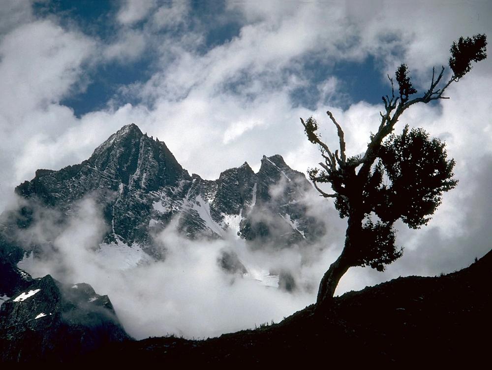 The Kolahoi glacier, Kashmir