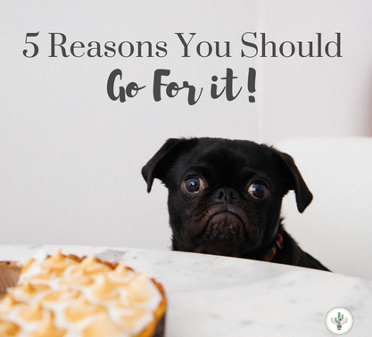 5 Reasons You Should Go For It!