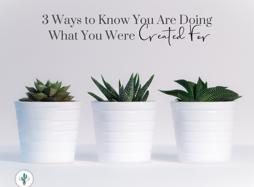 3 Ways to Know You are Doing What You Were Created For!