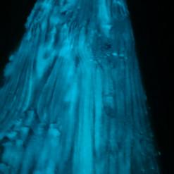 Lackierarbeiten Möbel, Fluoreszenz, Tischplatte lackiert, Neonfarbe, blau Maler Zieri - Beckenried Nidwalden