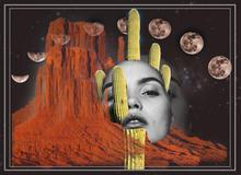 Desert Nights- grey boarder b&w face, sa