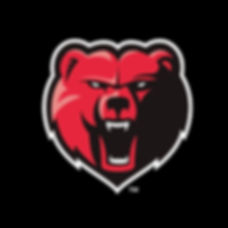 North Sydney Bears Baseball