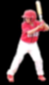 North Sydney Junior Baseball - North Sydney Bears