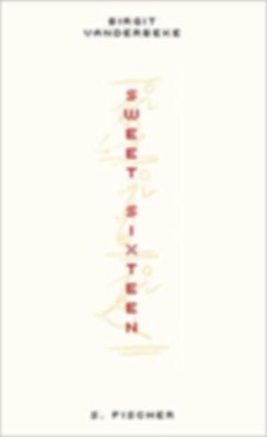 Sweet Sixteen - Birgit Vanderbeke