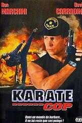 12033-karate-cop-0-230-0-345-crop.jpg