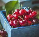 cherry-1534063_1920.jpg