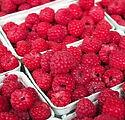 raspberry-1465988_1920.jpg