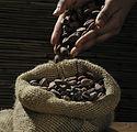 cocoa-beans-499970_1920.jpg