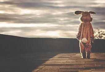 rabbit-542554_1920.jpg