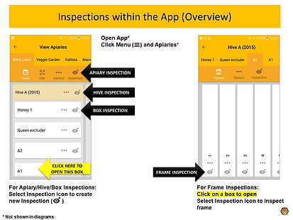 App Inspections Overview.jpg