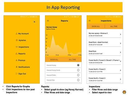 In App Reports.jpg