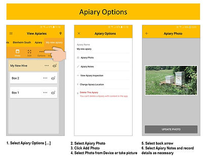 Apiary Options.JPG