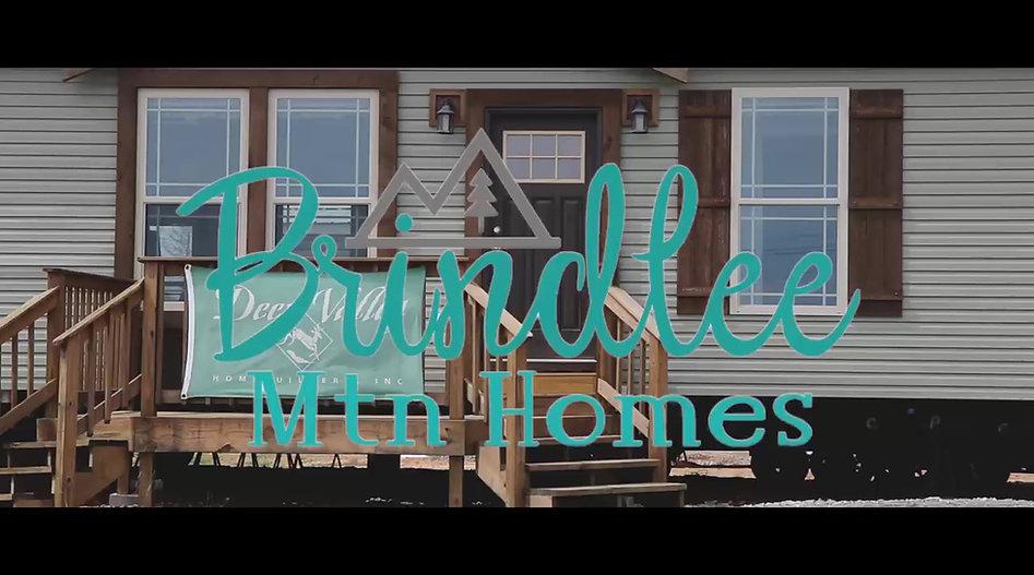 Brindlee Mtn Homes