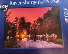 Jigsaw Puzzles £25