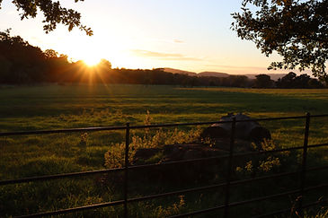 Cotwold Sunset