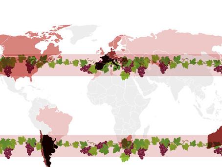La Geografía del Vino