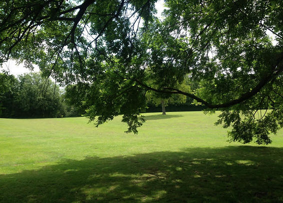 Playing Fields & Open Spaces Grass Cut by Ditton Services Shropshire and Staffordshire