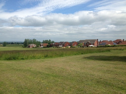 Field Grass Cut Ditton services