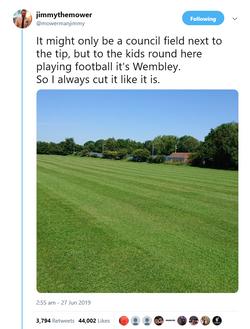 Viral Tweet