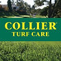 collier turf.jpg