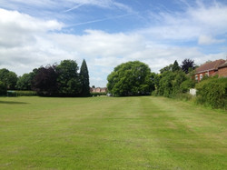 Greens cut Ditton Services