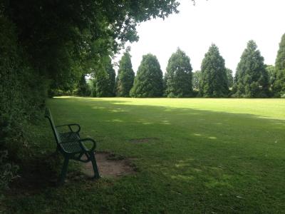 Community Grass cut Ditton Services