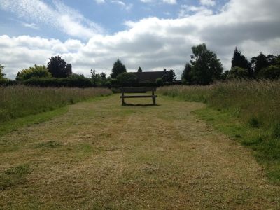 Meadow Grass Cut Ditton Services