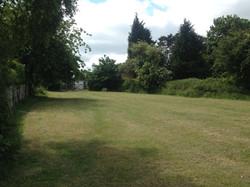 Dog Walking Area Grass Cut Ditton