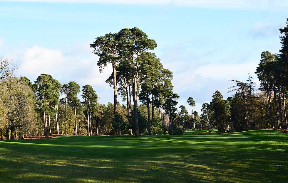 masters-build-up-golf-Woburn-alistair-ta