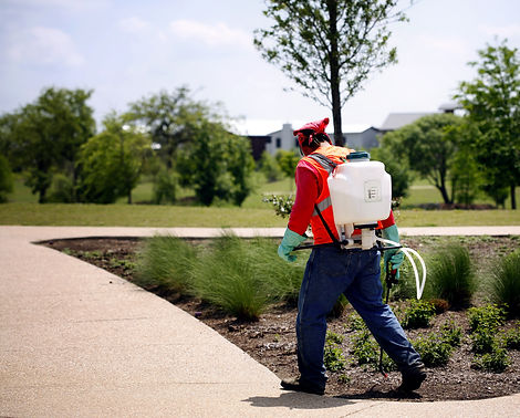 Spreading chemicals on lawn.jpg