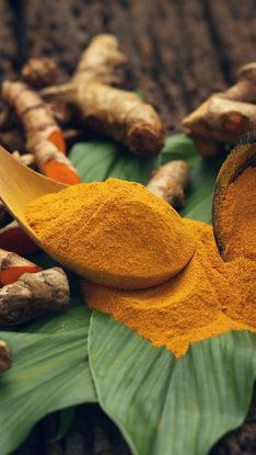 Curcuma Longa (Turmeric) Root Powder