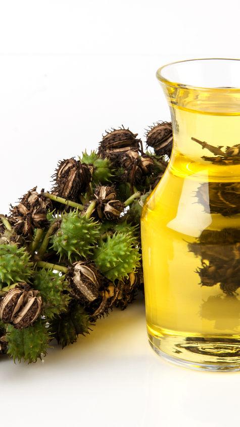 Piper Nigrum Fruit Oil
