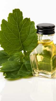 Pogostemon Cablin (Patchouli) Leaf Oil