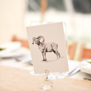 Fran & Tom Table Cards