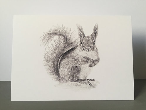 Single Christmas Card - Squirrel