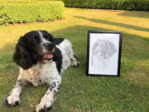 A4 Dog Drawing (unframed)