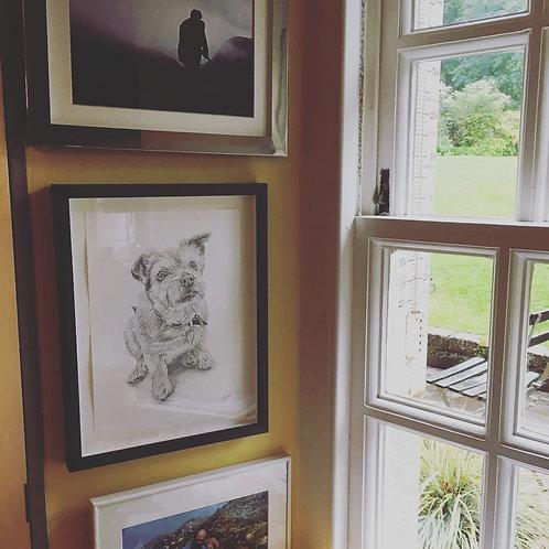 A4 Dog Drawing (unframed)