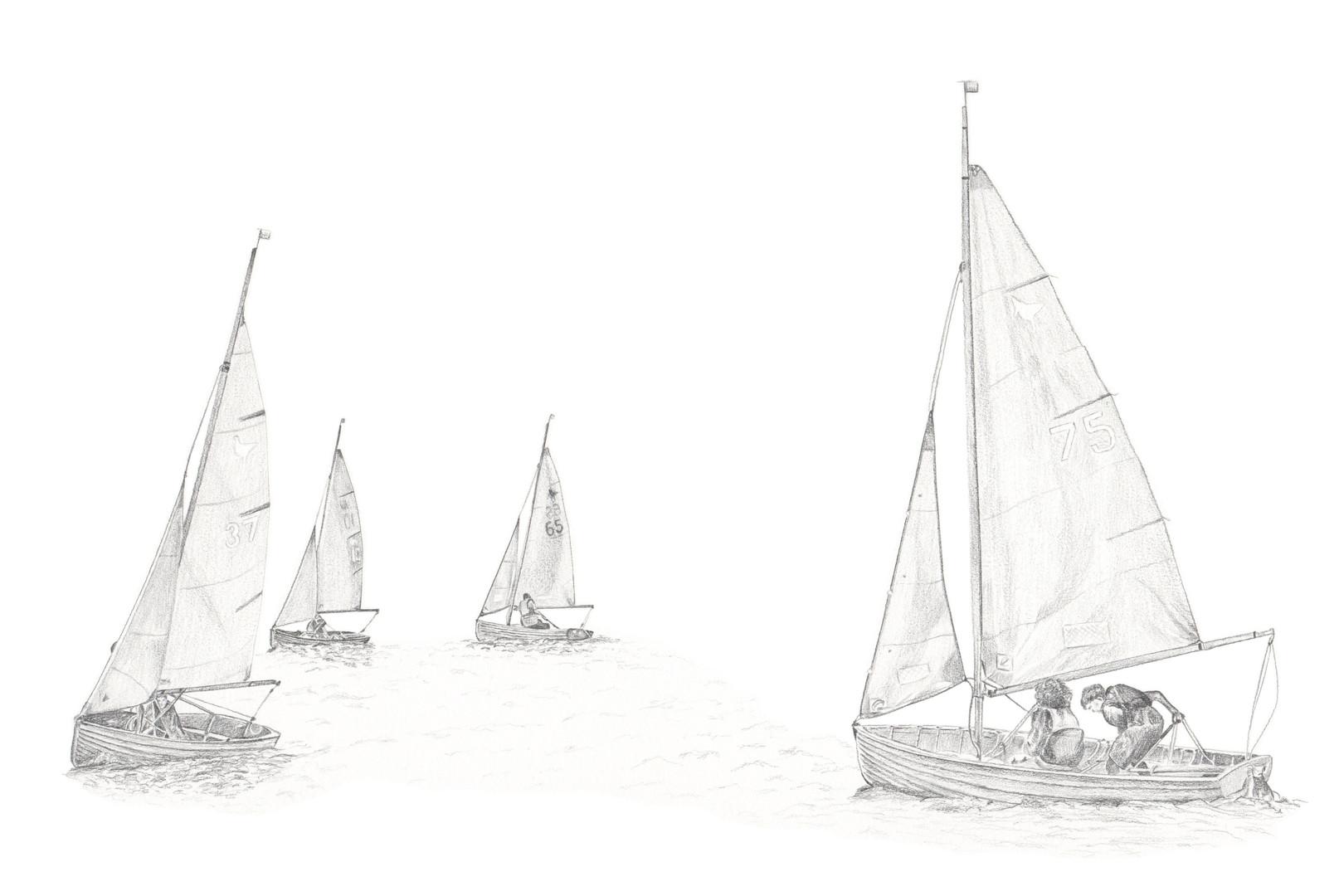Aldeburgh Lapwings
