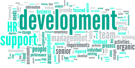 organic hr word cloud.PNG