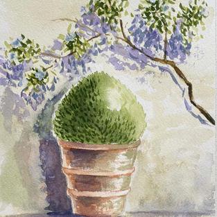 Pot and Vine