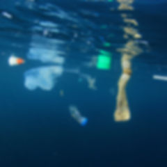 Plastic bags, bottles and straws polluti