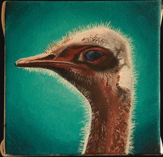 Ostrich Head.jpg