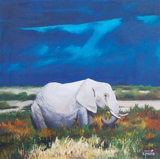 Elephant%20in%20the%20Grass.jpg