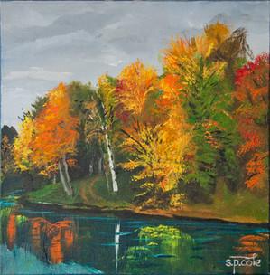 Fall Colours.jpg