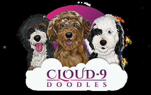 cloud 9 doodles