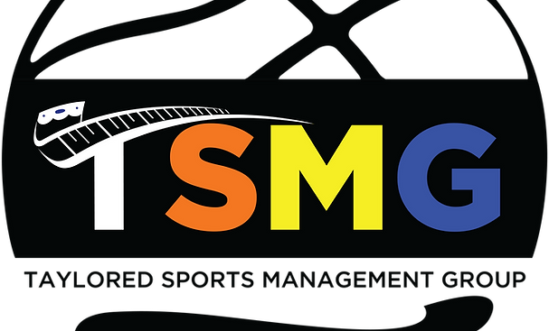 TSMG Logo - Sphere MultiColor.png