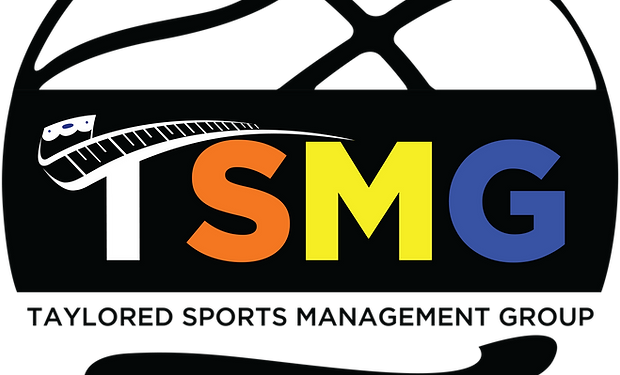 TSMG Logo - Sphere MultiColor.png