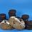 Thumbnail: Cookies & Crum
